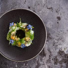 voorgerecht venusschelpen, first course clams